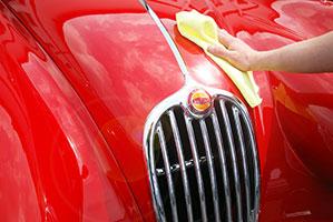Jaguar poliert